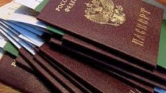 How to check passport details