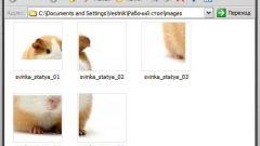Как разделить фото на несколько частей