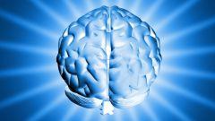 Как развивать левое полушарие мозга