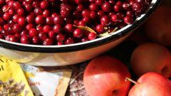 Как готовить салат из яблок с брусникой