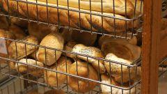 Как открыть хлебопекарню