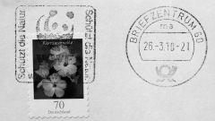 Как отправить письмо в Германию