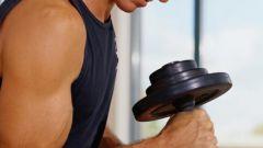 Как накачать хорошие мышцы