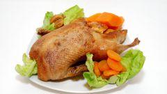 Как приготовить домашнего гуся