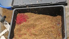 Как выращивать мотыля