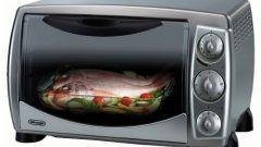 Как выбрать мини-печь