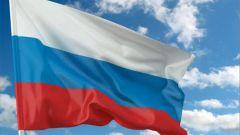 Как оформить российское гражданство