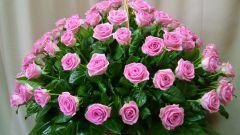 Как сохранить дольше срезанные розы
