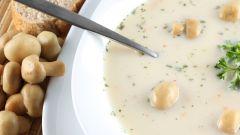 Как приготовить суп из плавленного сырка