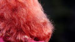 Как осветлить рыжие волосы