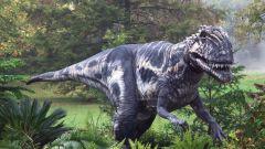 Как научиться рисовать динозавров