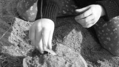 Как построить песочницу самому
