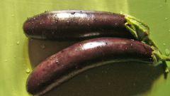 Как готовить закуску из баклажанов