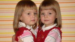 Как растить близнецов
