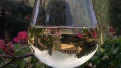 Как купить хорошее вино в 2017 году