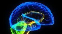 Как повысить работоспособность мозга