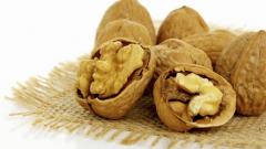 Как проращивать орехи из семян