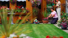 Как обустроить садовый участок