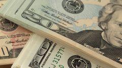 Как получить сертификат валютного кассира