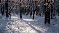 Как сочинить стих о зиме