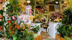 Как назвать магазин цветов