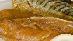 Как солить рыбу скумбрию