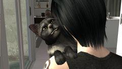 Как соединить Sims 2