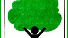 Как заполнить отчет по экологии в 2018 году