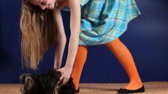 Как тренировать щенка
