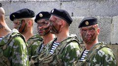 Как попасть в спецназ в Украине
