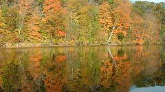 Как описать осень