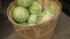 Как сохранить капусту свежей