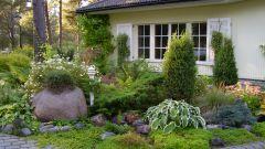 Как оформить куплю садового участка