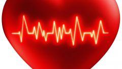 Как укрепить сердечно сосудистую систему
