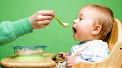 Как начать прикорм в 6 месяцев
