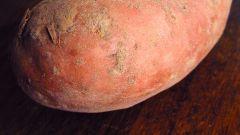 Как запечь картофель в микроволновке