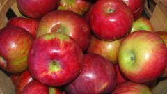 Как выбрать яблоки