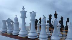 Как играть в шахматы по интернету
