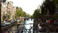 Как получить гражданство Нидерландов