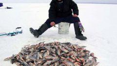 How to make winter fishing box