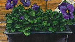 Как вырастить из листика фиалку