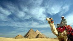 Как изучить арабский язык