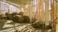 Как построить овчарню