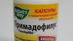 Как принимать примадофилус
