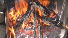 Как добыть огонь в лесу: уроки выживания