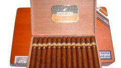 Как курить кубинские сигары