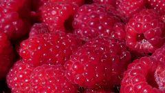 How to store raspberries