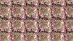 Как создать pattern