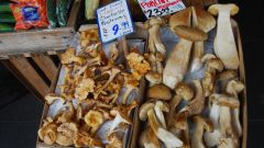 How to cook dried mushrooms
