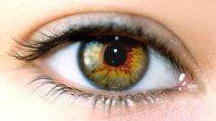 Как научиться видеть мир